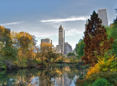 Live near Central Park and Experience Manhattan